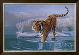 Siberian Tiger Prints by Leonard Pearman