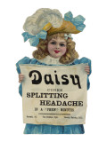 Daisy Headache Cure Giclee Print