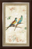 Hooded Parrot Print by Jillian David