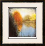 Autumn Marsh I Limited Edition Framed Print by Mark St. John