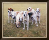 Seven V.W.H. Foxhounds Limited Edition Framed Print by Gary Stinton