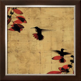 Colibri I Print by Chris Donovan