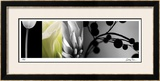 Fusion I Limited Edition Framed Print by Anthony Tahlier
