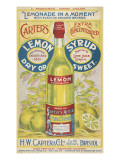 Carter's Lemon Syrup - Lemonade in a Moment Giclée-tryk