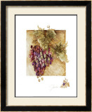 Grapes II Prints by Elizabeth Jardine