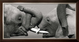 African Elephant Posters by Jean-Michel Labat