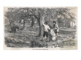 Cider Making : Collecting the Grass-Fruit Giclée-tryk