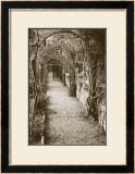 La Centinale, Italy Prints by Meg Mccomb