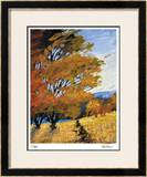 Summer's Afternoon Limited Edition Framed Print by Michael Tienhaara