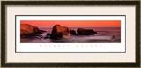 Nature's Colors, Big Sur Art by Wayne Williams