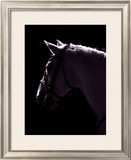 Deep Thought Framed Giclee Print by Jeannie Clark