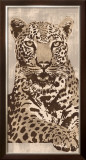 Leopard Poster by Andrew Cooper