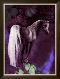 Grey Stallion Art Framed Giclee Print by Dominique Cognee