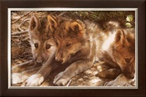 Pick of the Pack Prints by Carl Brenders
