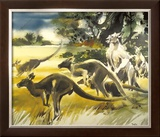 Kangaroo Limited Edition Framed Print by Wolfgang Weber