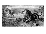 Dr. David Livingstone Attacked by a Lion, 1843 Giclee Print