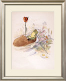 The Frog in a Shoe Framed Giclee Print