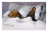 Dachshunds in Bed a Marriage of Convenience Giclee Print