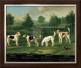 Two Couples of Hounds in a Park Print by Francis Sartorius