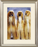 Dogs Standing Up Art