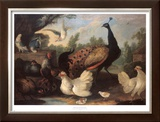 Barnyard with Chickens Prints by Melchior d'Hondecoeter