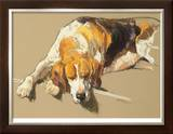 Hound in a Kennel Limited Edition Framed Print by Andre Pater