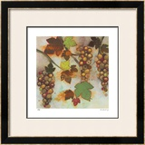 Vineyard Visions II Limited Edition Framed Print by Aleah Koury