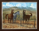 Appaloosa I Posters by Ron Jenkins
