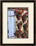 Geranium Wall Prints by Meg Mccomb