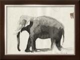 The Elephant Prints by Marc Lacaze