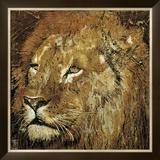 Lion Portrait Print by Fabienne Arietti