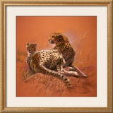Cheetah Mother Prints by Renato Casaro