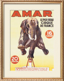 Amar Framed Giclee Print