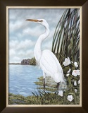 Great White Egret Prints by James Harris