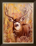 Buck in Forest Poster by Michelle Mara