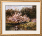 Sheep Grazing Under Apple Blossoms Prints by John Appleton Brown