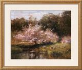 Sheep Grazing Under Apple Blossoms Prints by John Appleton Brown