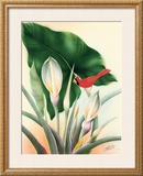 Cardinal Framed Giclee Print by Frank Oda