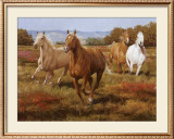 The Thundering Herd Prints by Spartaco Lombardo