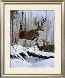 Leaping Deer Posters by Robert Travers