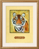 Tiger Posters by Nancy Azneer