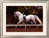 Dressage Framed Giclee Print by Sara Stafford