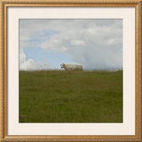 Prairie, c.2007 Framed Giclee Print by Jacky Lecouturier