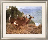Running Deer Prints by Robert Travers