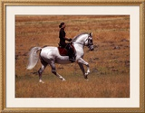 In the Country Framed Giclee Print by Sara Stafford