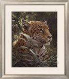 Symbol of the Rainforest Art by Robert Bateman