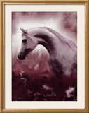 Silver Stallion Framed Giclee Print by Dominique Cognee