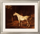 Forest Dapple Print by Jacques-Laurent Agasse