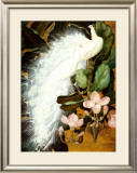 White Peacocks Prints by Jessie Arms Botke