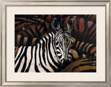 Zebras Posters by Marianne Julie Jegou